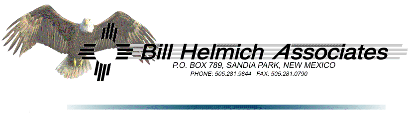 Bill Helmich Associates
